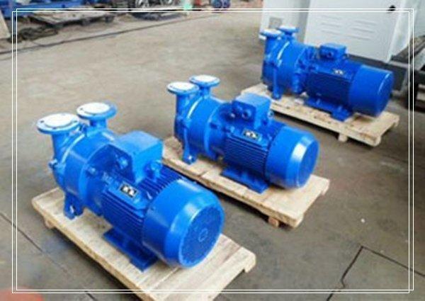 2bv6水环真空泵