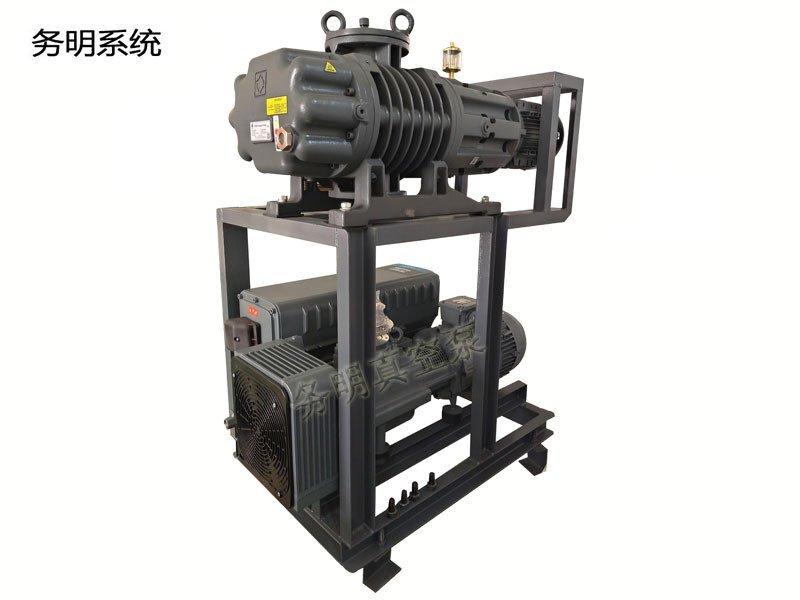 罗茨旋片真空机组,JRP罗茨泵+GVS旋片泵